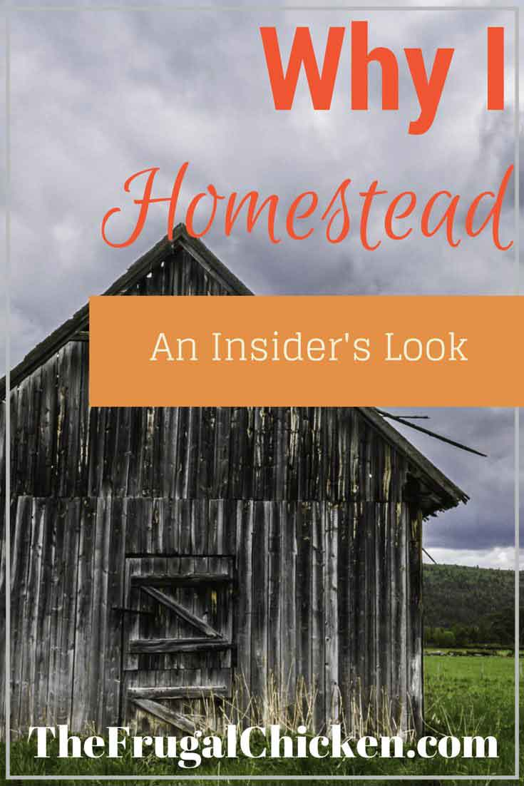Why I homestead