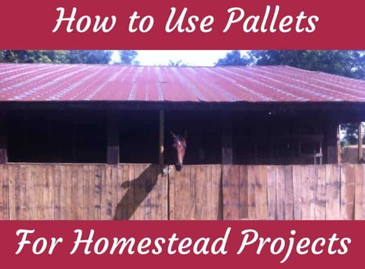 How to Use Pallets for Projects – and Why I Recommend Screws Instead of Nails