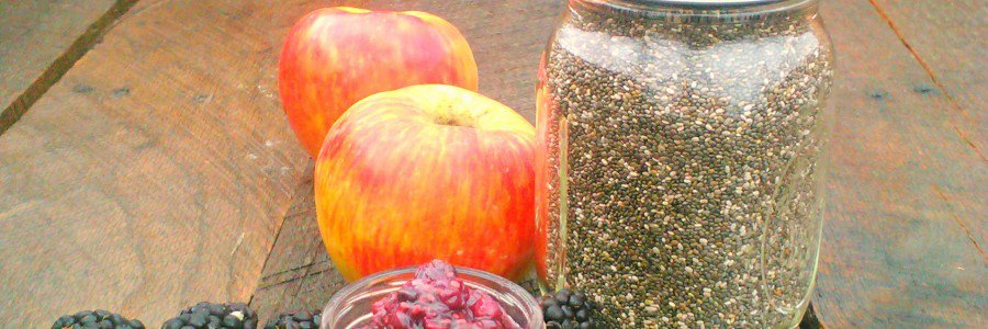 Nutritional Benefits of Chia Seeds