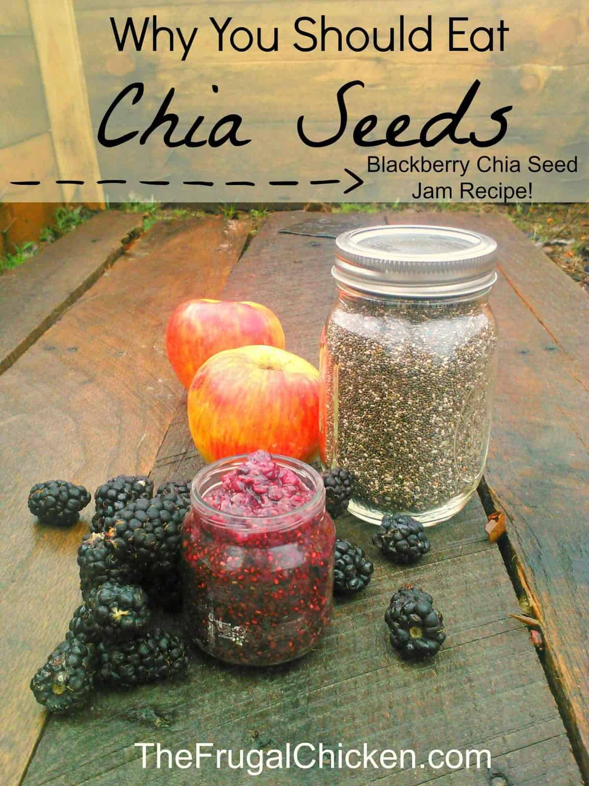 Nutritional Benefits of Chia Seeds – Including Blackberry Chia Seed Jam Recipe