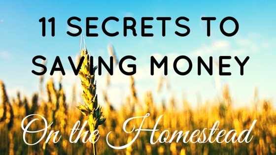 save money on the homestead