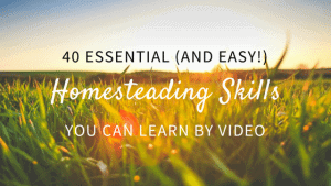 Easy Homesteading Skills