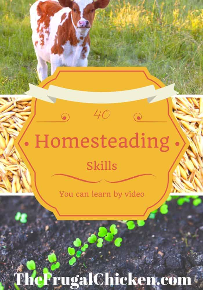 40 Homesteading Skills You Can Learn By Video From FrugalChicken