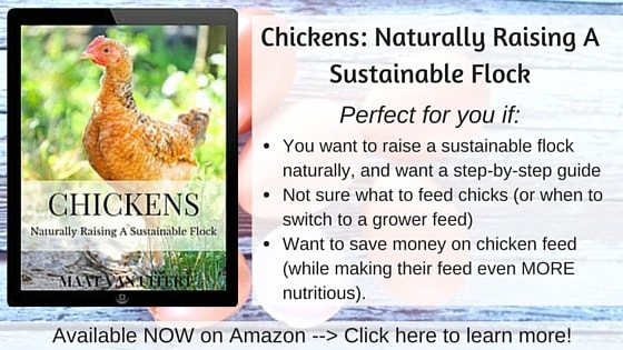 Chickens- Naturally Raising A Sustainable Flock AD-min