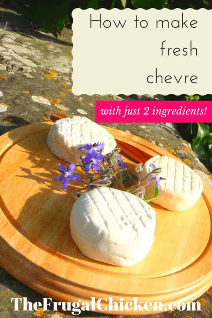 With this simple recipe involving just 2 ingredients, you can have fresh, homemade chevre. It's really so easy you won't believe it. I show you how to make it, what to buy, and where. From FrugalChicken