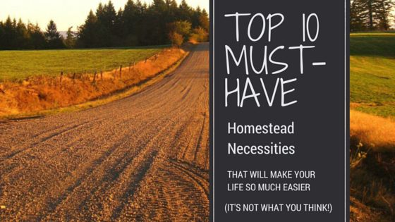 10 Homestead Tools You Should Have (They're Inexpensive!)