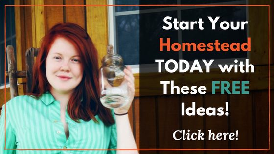 Start Your Homestead Today