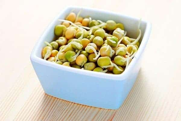 homemade organic chicken feed recipe with peas