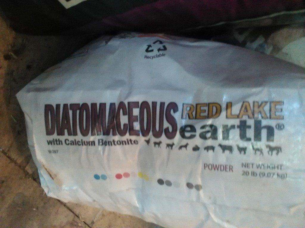 Ever since we started offering diatomaceous earth to our chickens, they've been so much healthier. Here's what it is and how to use it in the coop! From FrugalChicken