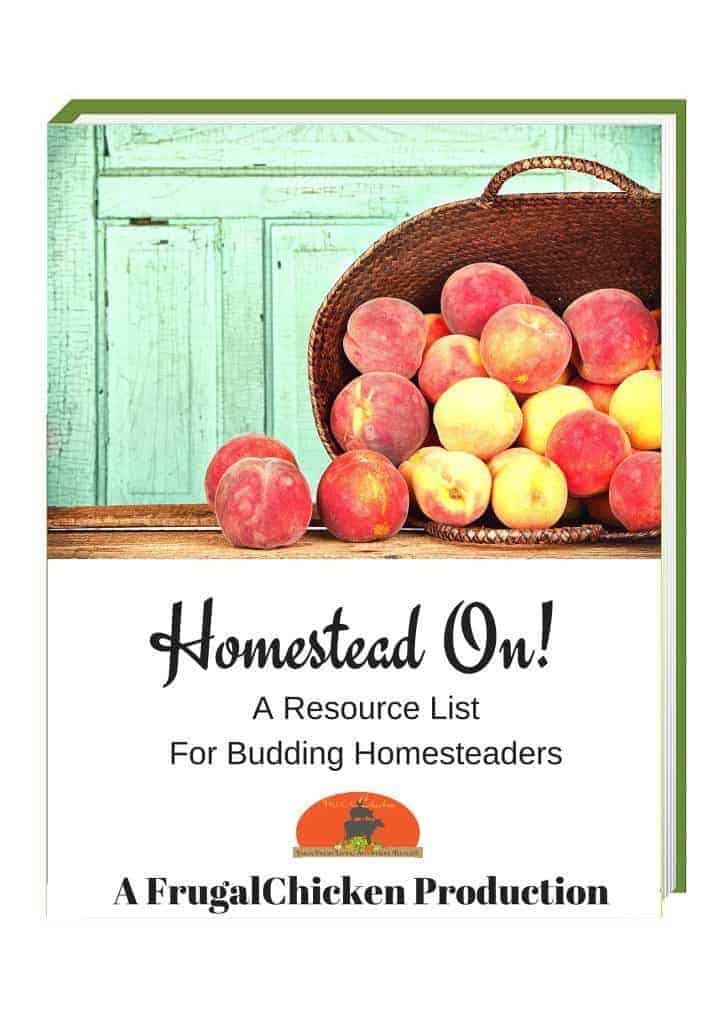 homestead on cover