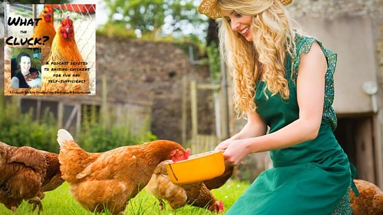 Save Money On Chicken Feed: 8 Ways To Save Mega Bucks When Feeding Your Chickens What The Cluck?! Session 10 [Podcast]