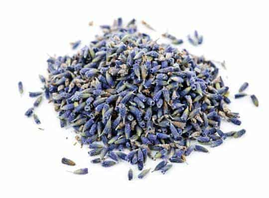 herbs for hens lavender