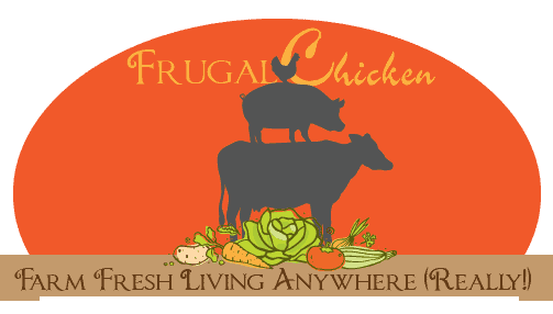 FrugalChicken Productions