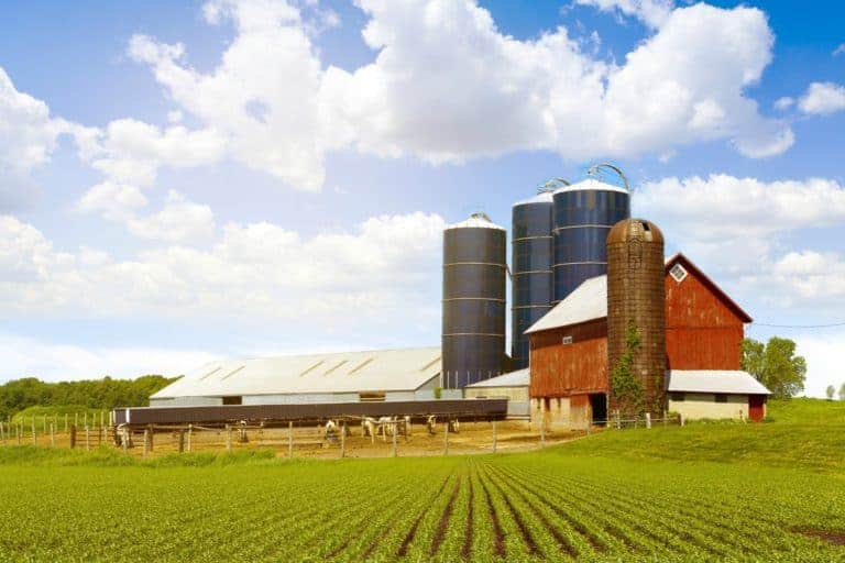 Dannon Yogurt Raises The Barn Roof With Non-GMO Ingredients