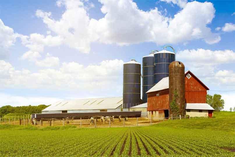 Dannon Yogurt Raises The Barn Roof With Non-GMO Ingredients
