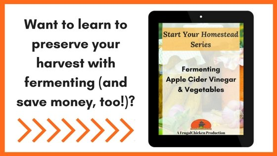 Want To Learn To Preserve Your Harvest With Fermenting And Save Money Too