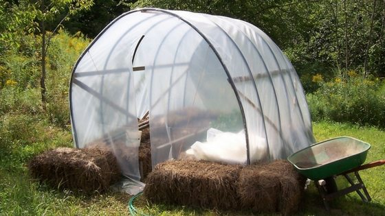 How To Use Hay Bale Gardening To Increase Your Harvest!