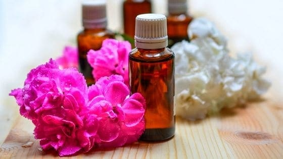 9 Essential Oils To Repel Insects