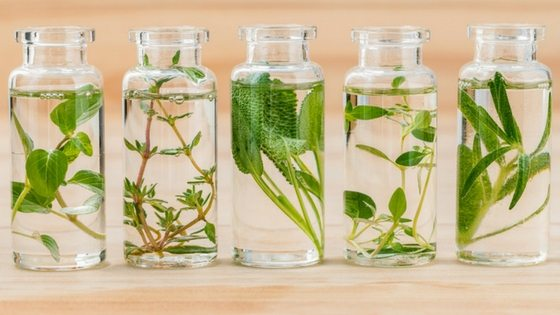 6 Genius Hacks To Preserve Fresh Herbs