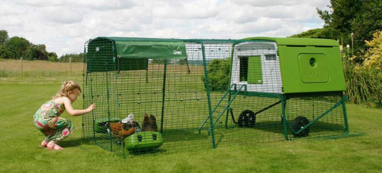 We tried an Eglu Cube Chicken Coop & Here's What Happened.