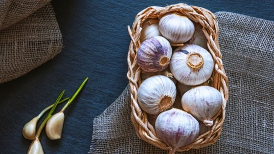 How To Store Garlic Long Term