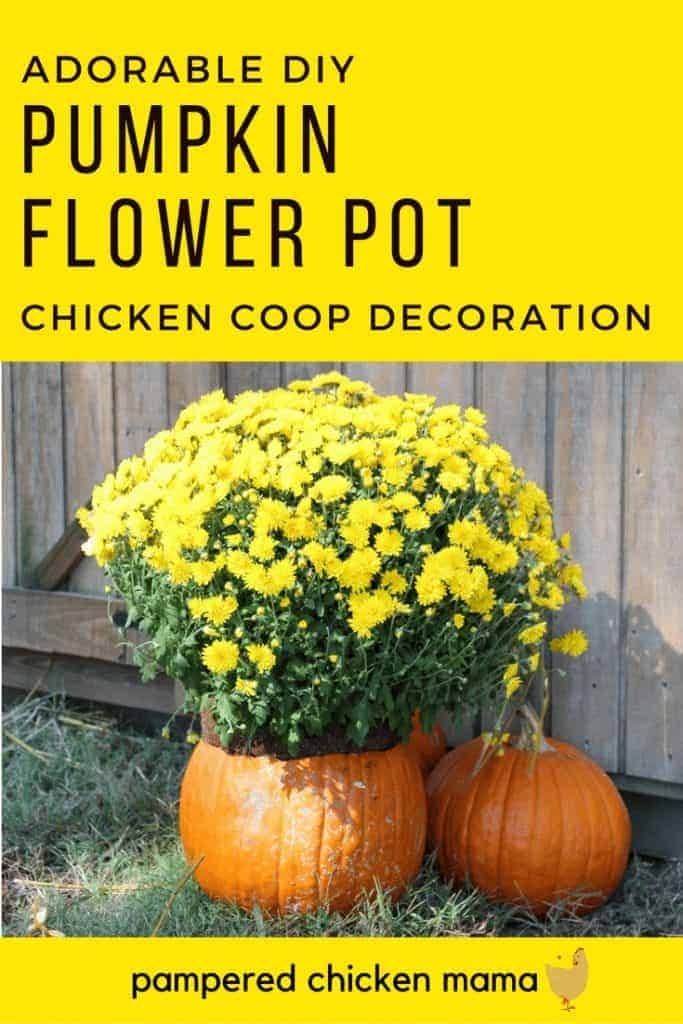 DIY Pumpkin Vase Chicken Coop Decoration For Fall Frugal Chicken - Chicken co op with flowers