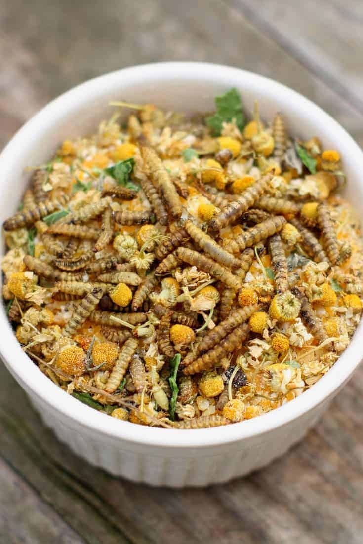 """Chamomile & Black Soldier Fly Larvae """"Granola"""" for chickens"""