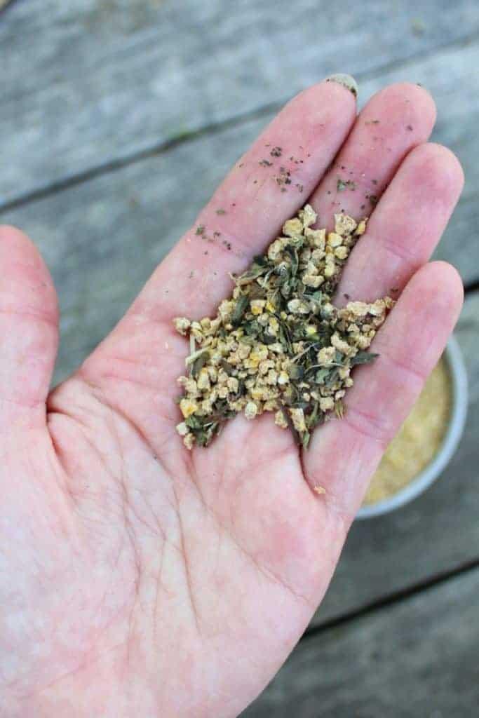 frugal feeds chicken water feeder hacks