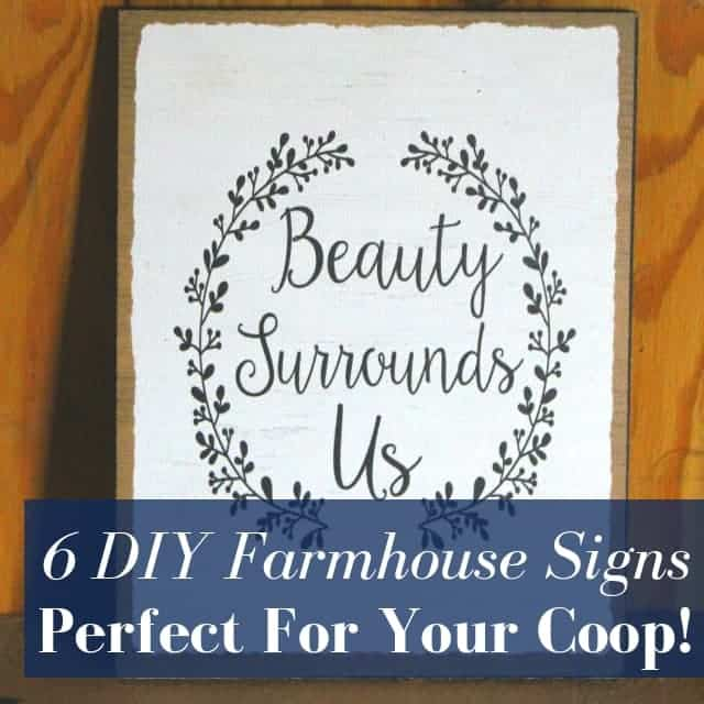 6 DIY Farmhouse Sign Ideas Perfect For Your Chicken Coop!