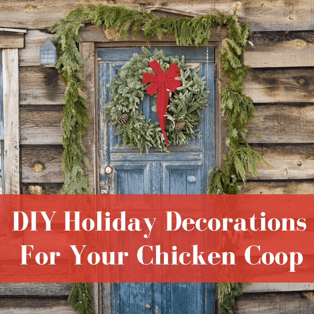 8+ DIY Holiday Decorations For Your Chicken Coop