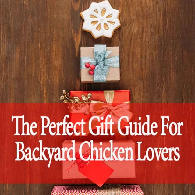 The Perfect Gift Guide For Backyard Chicken Lovers