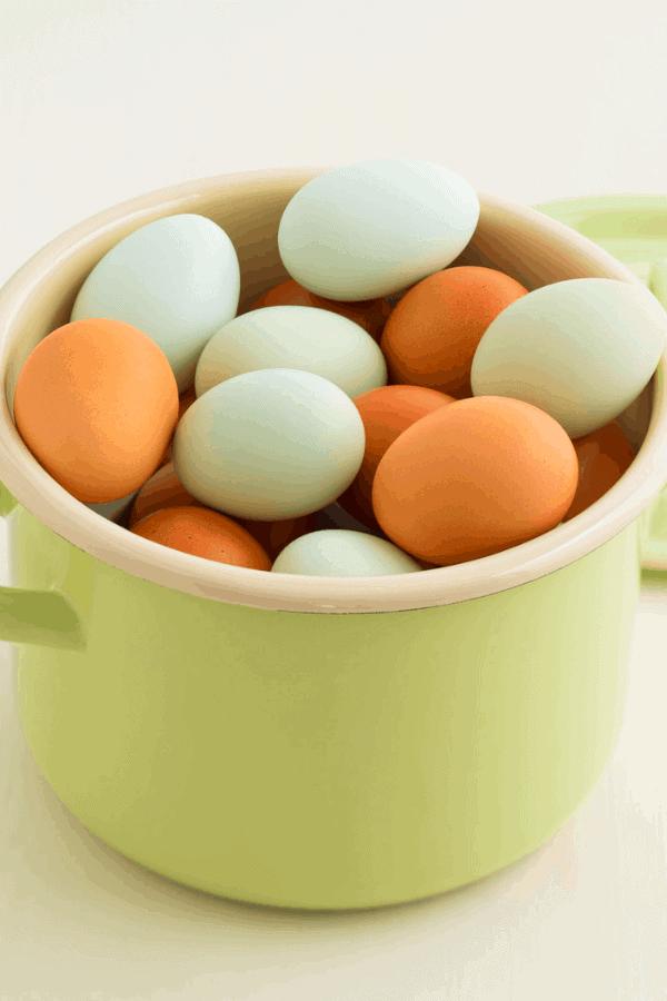 blue easter egger eggs