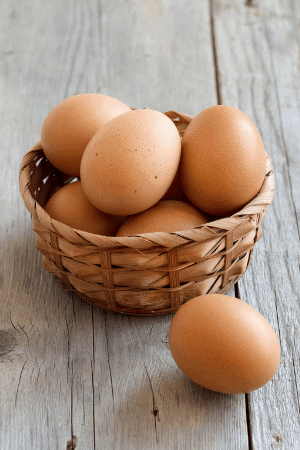 brown plymouth rock chicken eggs