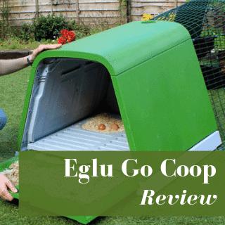Eglu Go Chicken Coop Review: Buyer's Guide