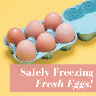 can you freeze eggs in carton