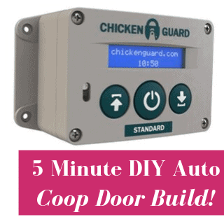 diy coop door build chickenguard