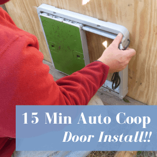 Automatic Coop Door Install: Omlet Universal Automatic Chicken Coop Door Review