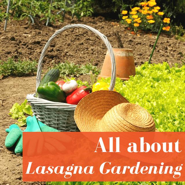 Lasagna Gardening Quick Start Guide