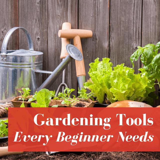 Gardening Tools Every Beginner Needs