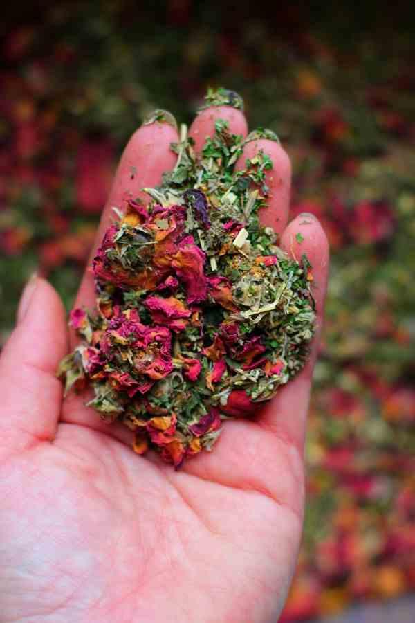 Nesting Herbs