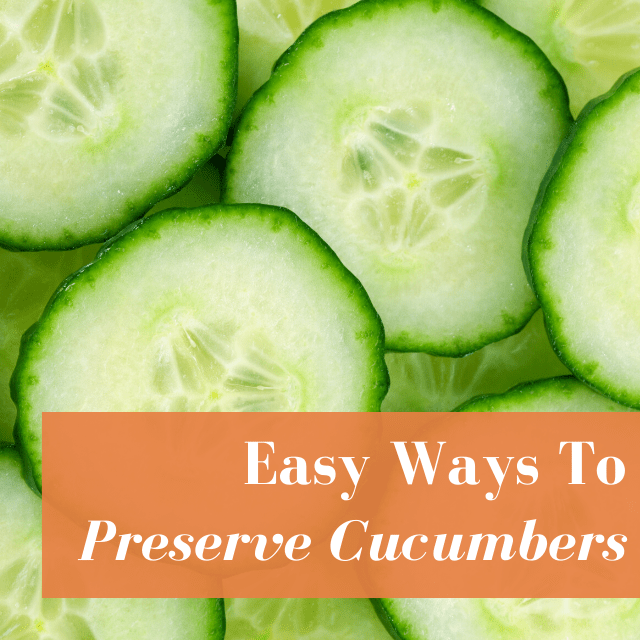 8 Ways To Preserve Cucumbers This Summer