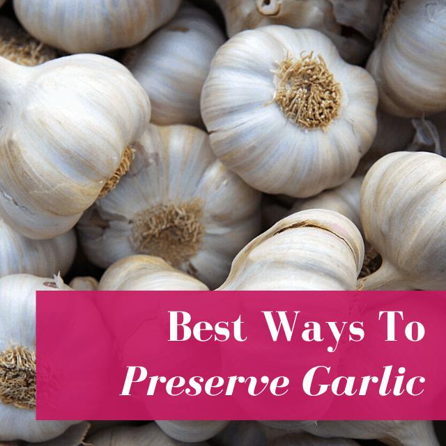8 Best Ways to Preserve Garlic