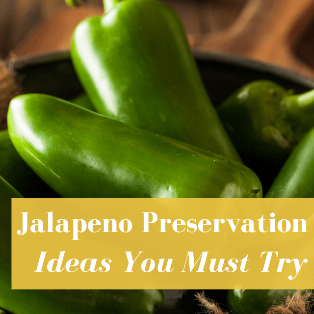 6 Jalapeno Preservation Ideas You Must Try