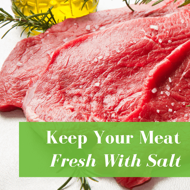 Preserving Meat with Salt