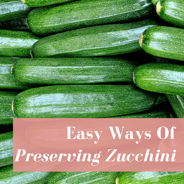 6 Simple Ways To Preserve Zucchini